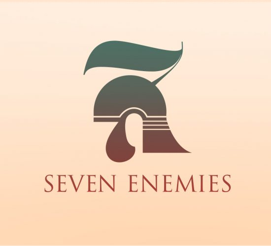 Brand and marketing case studies - Seven Enemies logo